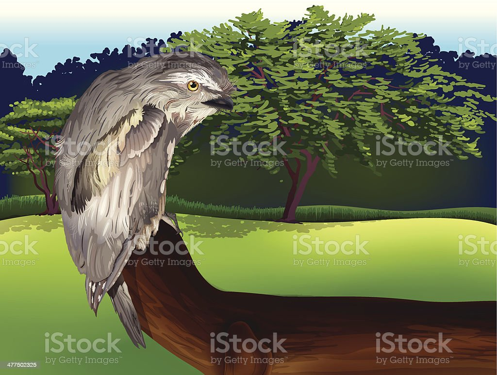 Wild Bird vector art illustration