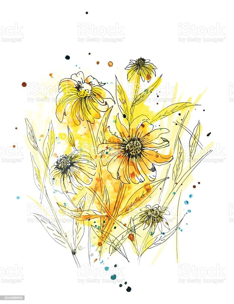 Wild Daisy Plant in Yellow Watercolor vector art illustration