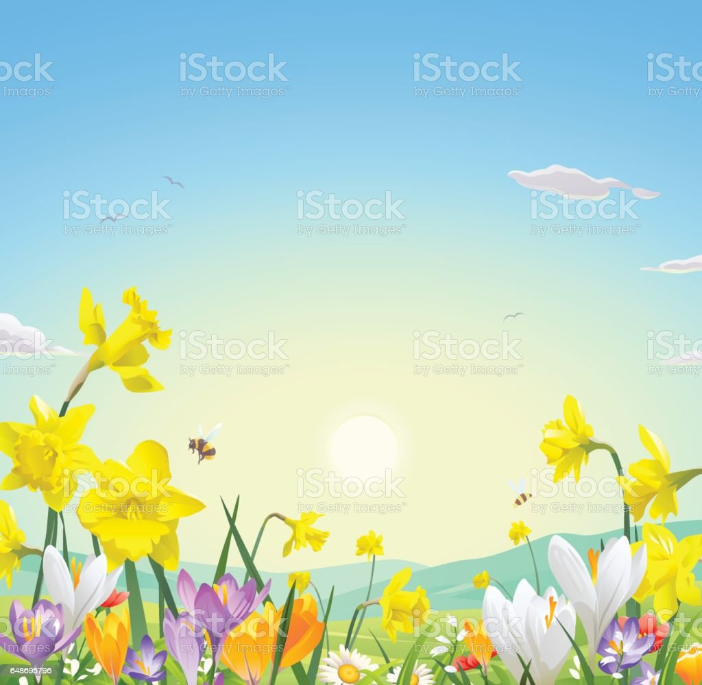 Wild Flower Field vector art illustration