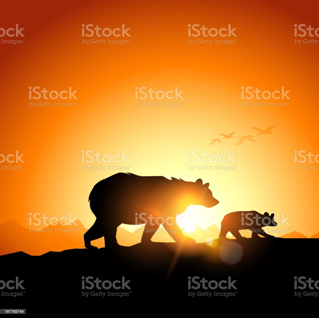 Wild Grizzly Bears vector art illustration