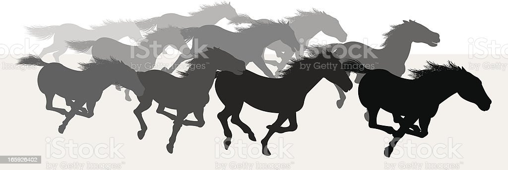 Wild Horses Stampede - Silhouette Background vector art illustration