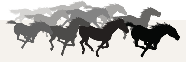 stampede of horses coloring pages - photo#28
