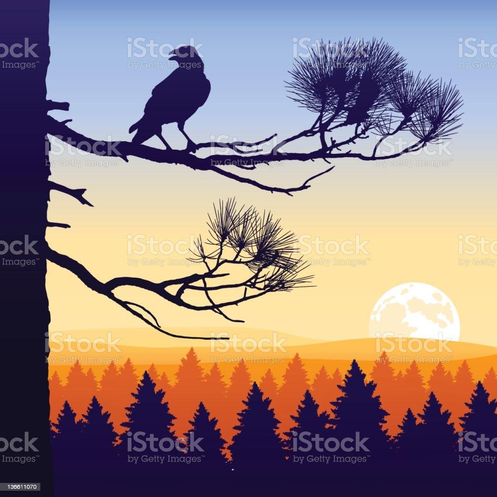 Wilderness Twilight vector art illustration