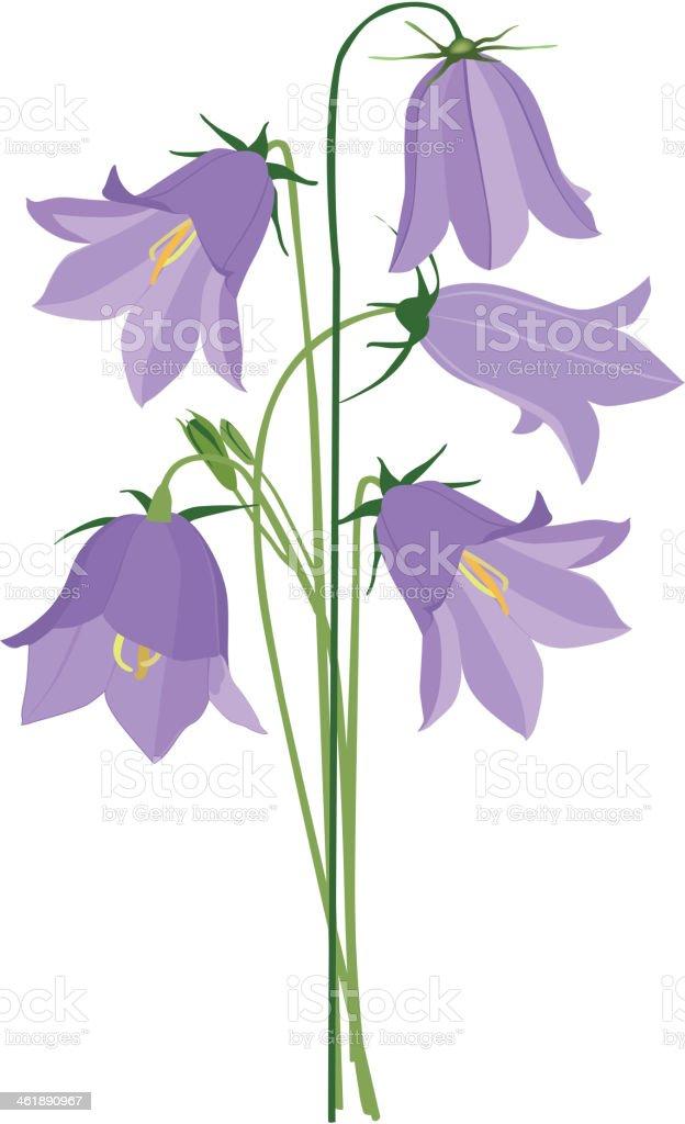 Wildflower Posy. vector art illustration