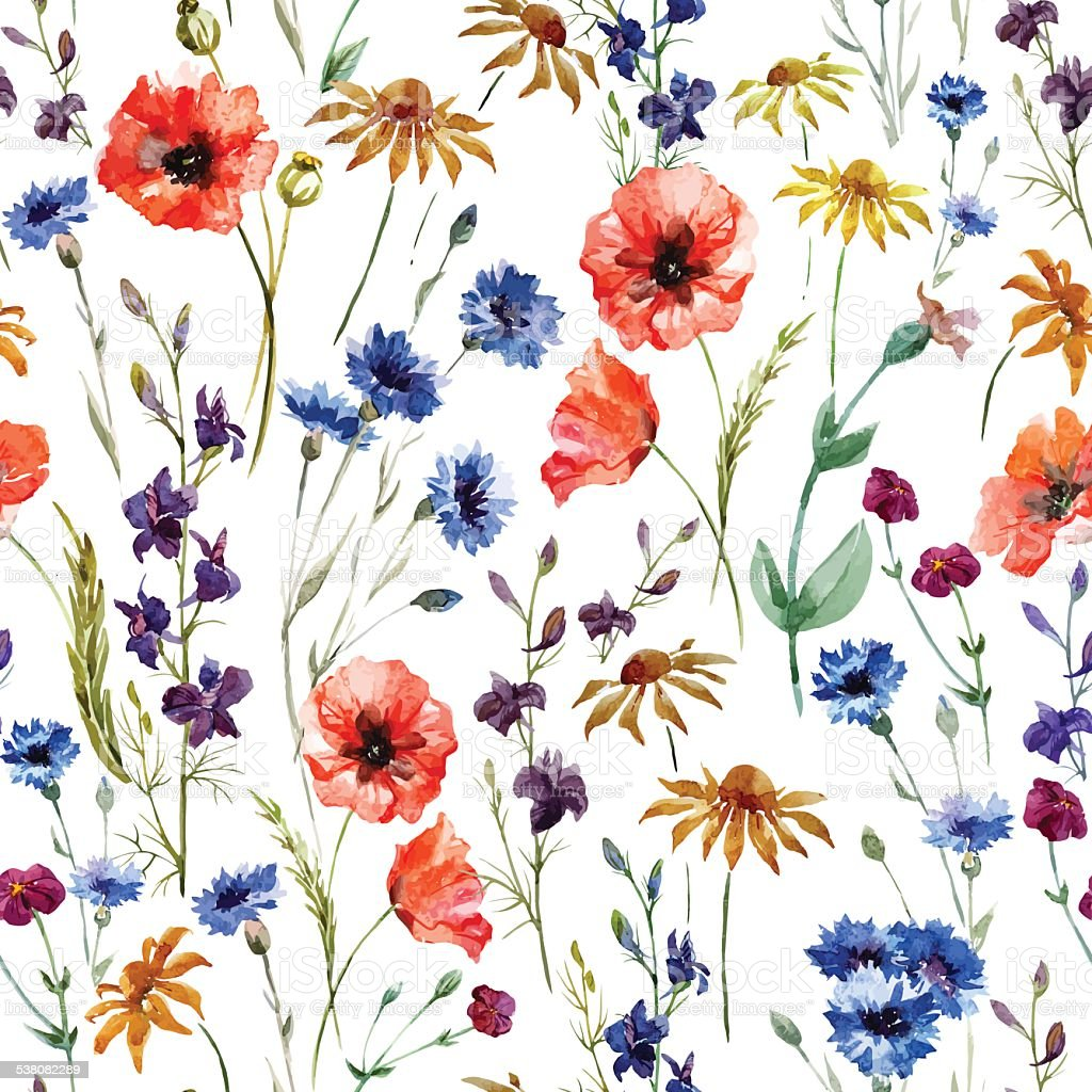 Wildflowers vector art illustration
