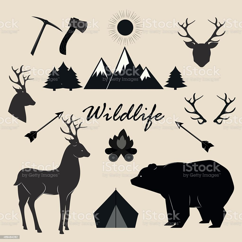 Wildlife, camping and adventure vector elements set. vector art illustration