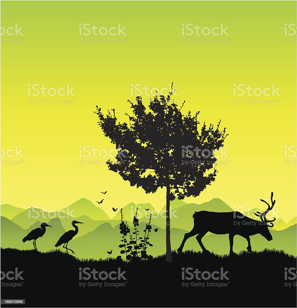 Wildlife in the country vector art illustration