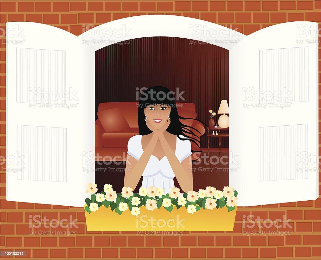 Window Beauty vector art illustration