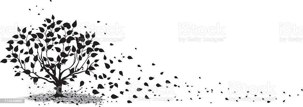 Windy Autumn Tree Silhouette Leaves Blowing off in the Wind royalty-free stock vector art