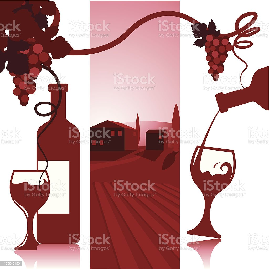 Wine and Vinyard vector art illustration