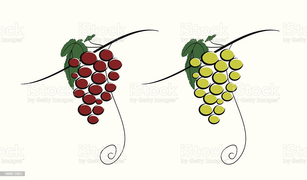 Wine Grapes royalty-free stock vector art