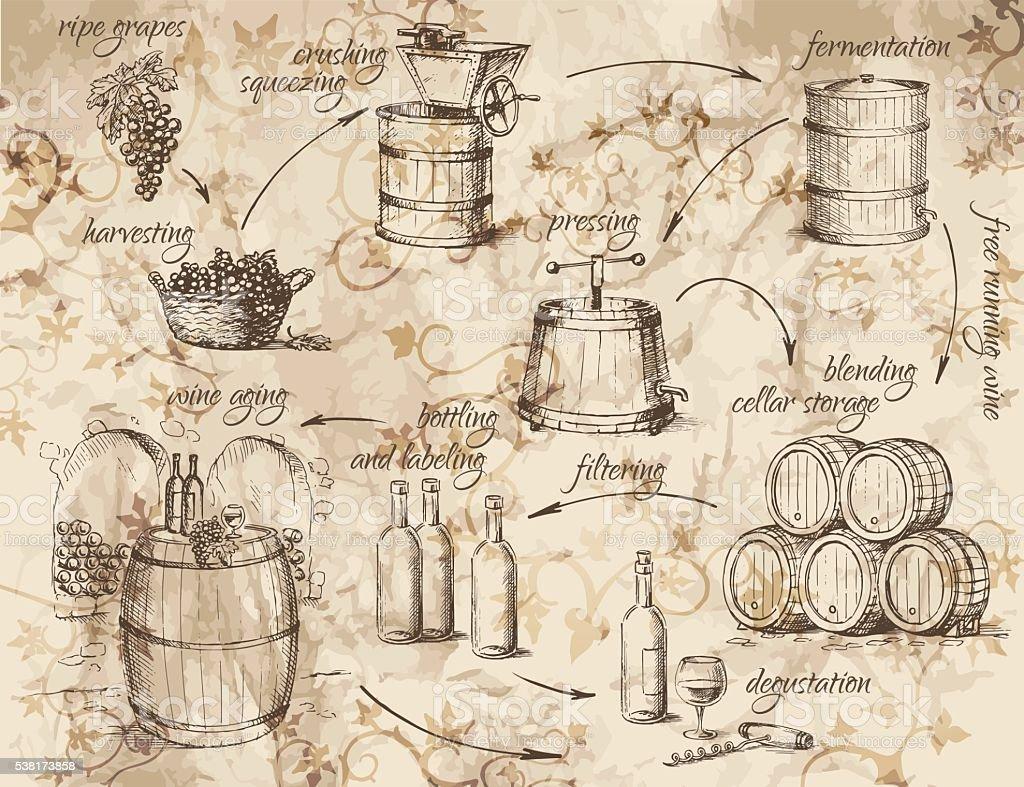 Wine production scheme vector art illustration