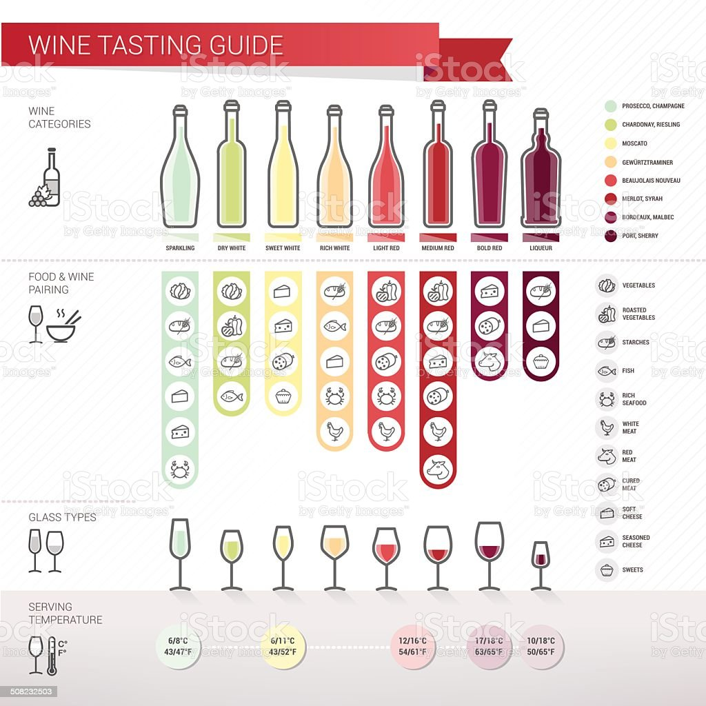 Wine tasting guide vector art illustration