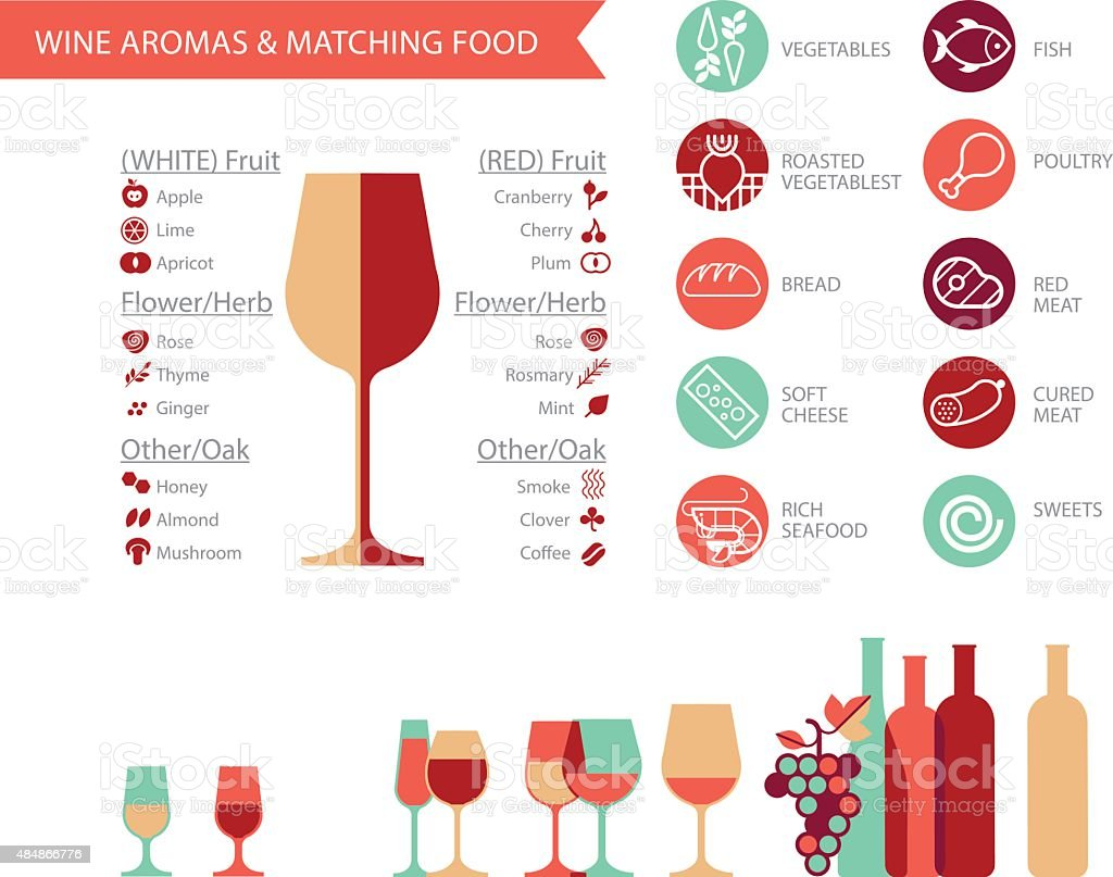 Wine_Info_Final vector art illustration