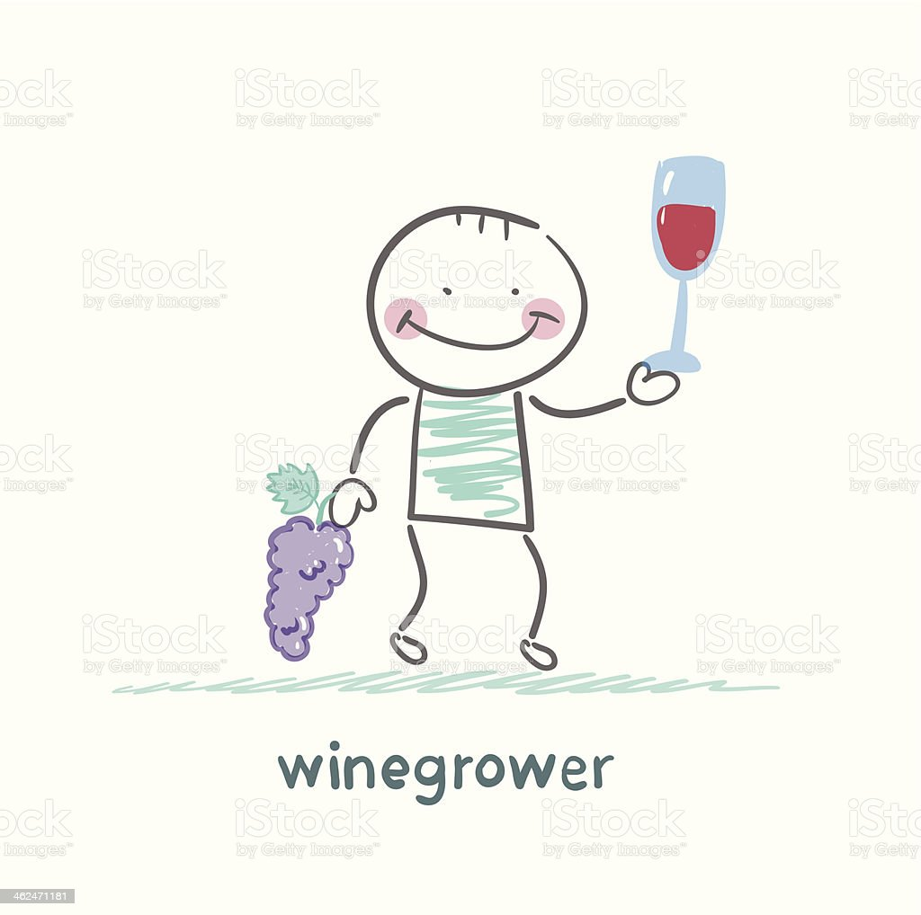 winegrower holds a bunch of grapes royalty-free stock vector art