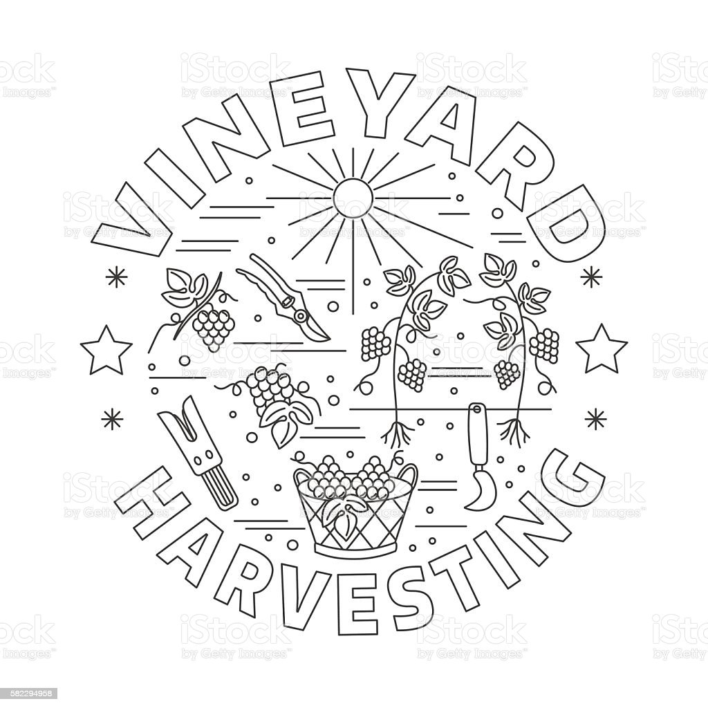Winemaking, wine tasting graphic design concept vector art illustration