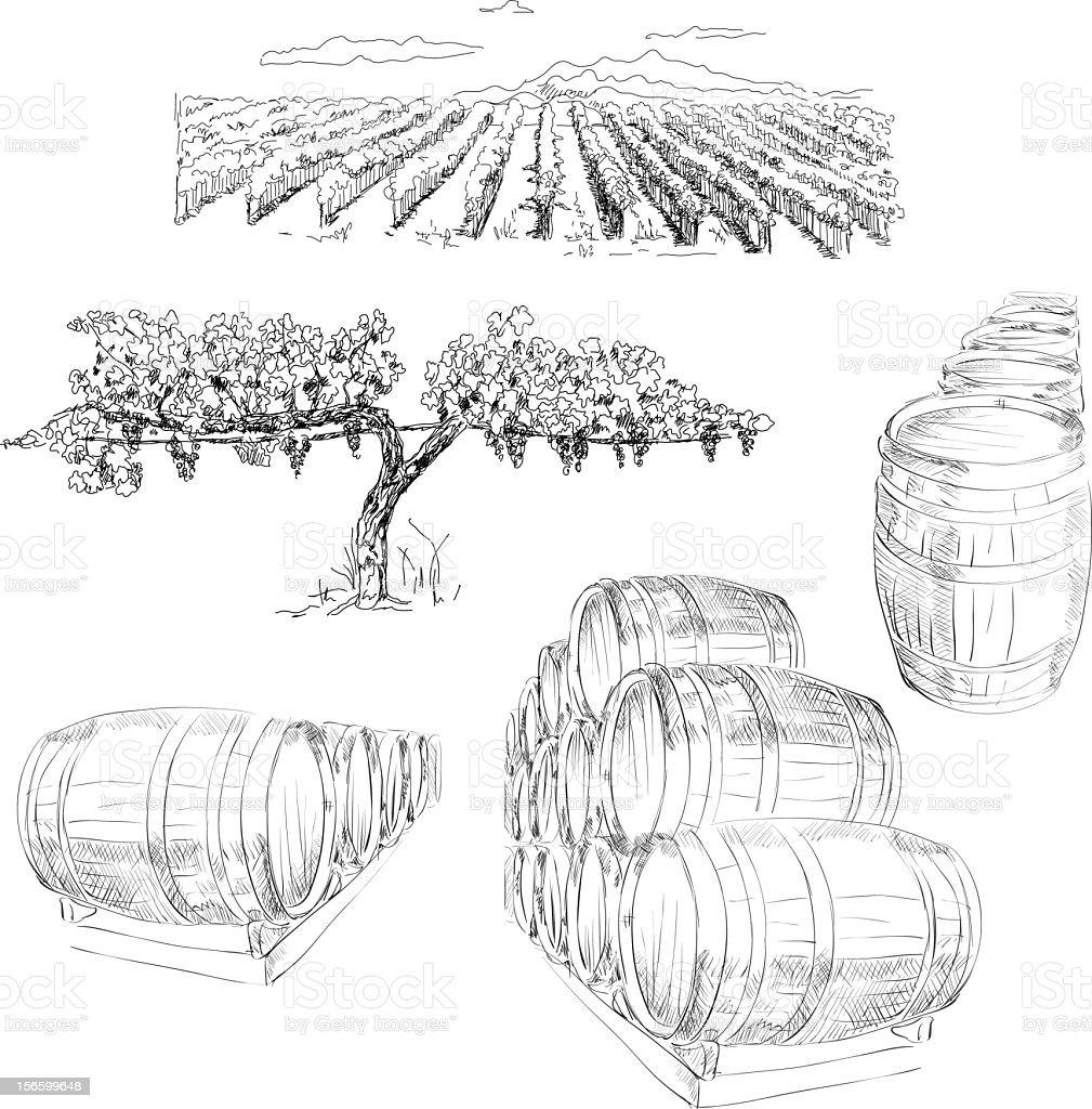 Winery vector art illustration