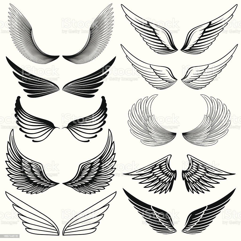 Wing Design Elements vector art illustration