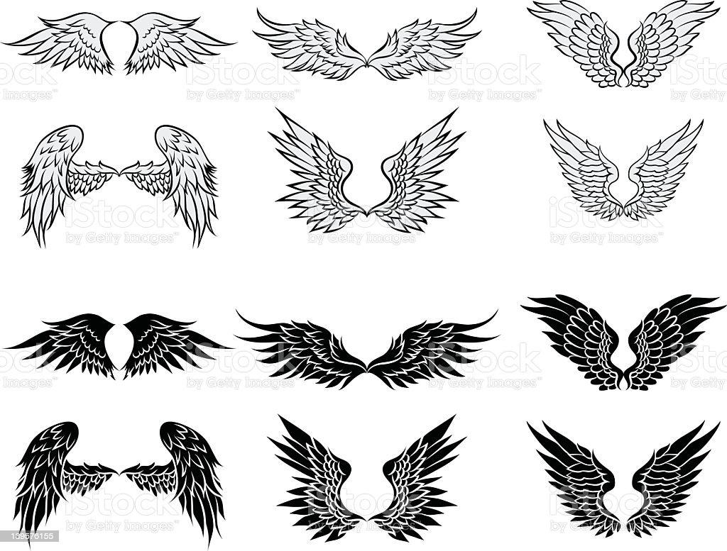Wings illustration vector art illustration