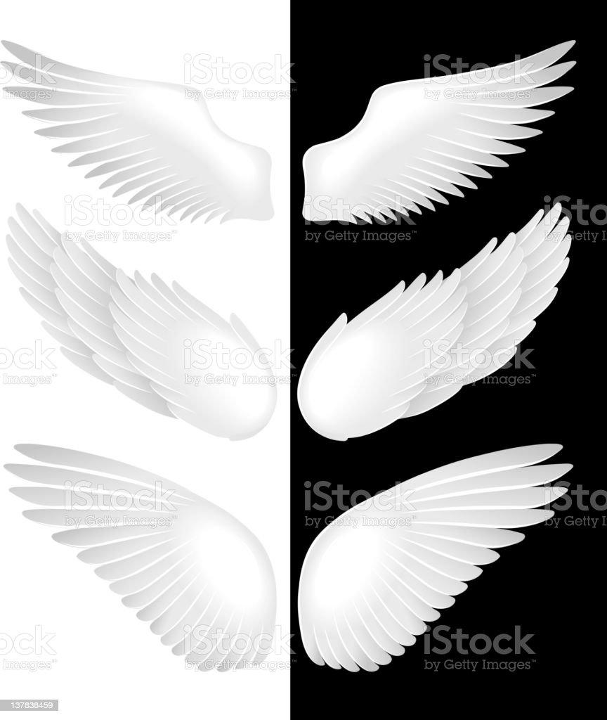 Wings. vector art illustration