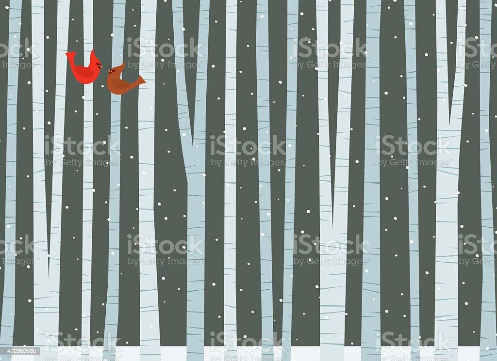 Winter Among the Birch Trees vector art illustration