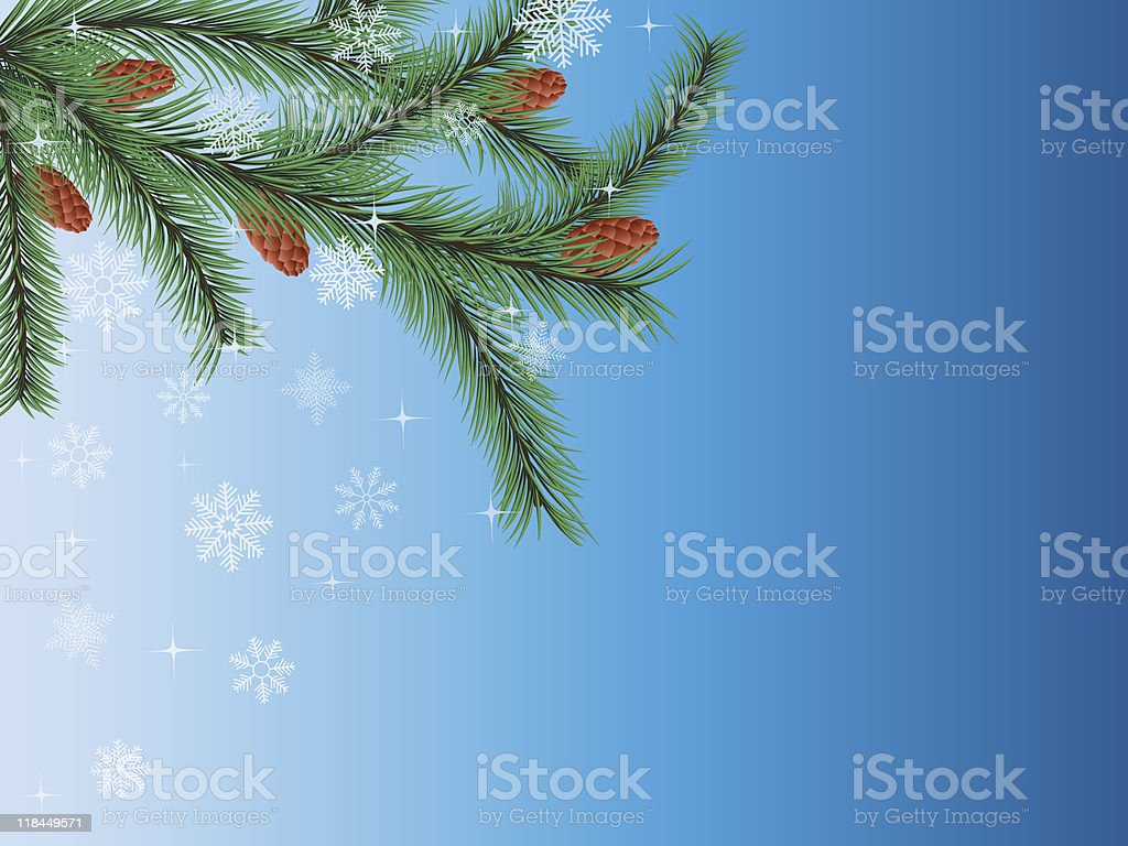 Winter background with a fir tree. royalty-free stock vector art