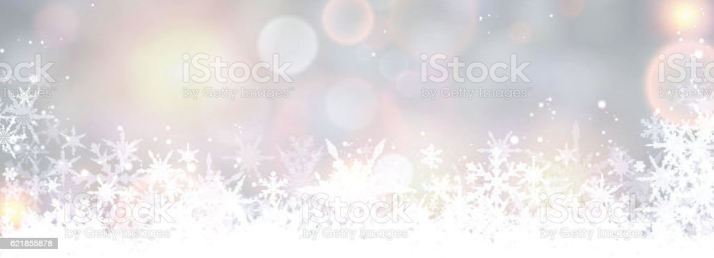 Winter banner with snowflakes. vector art illustration