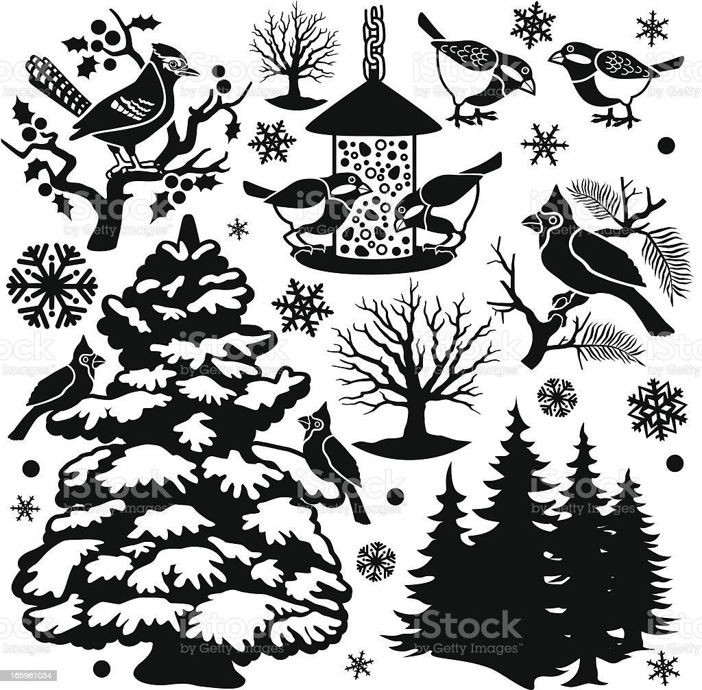 winter birds design elements vector art illustration