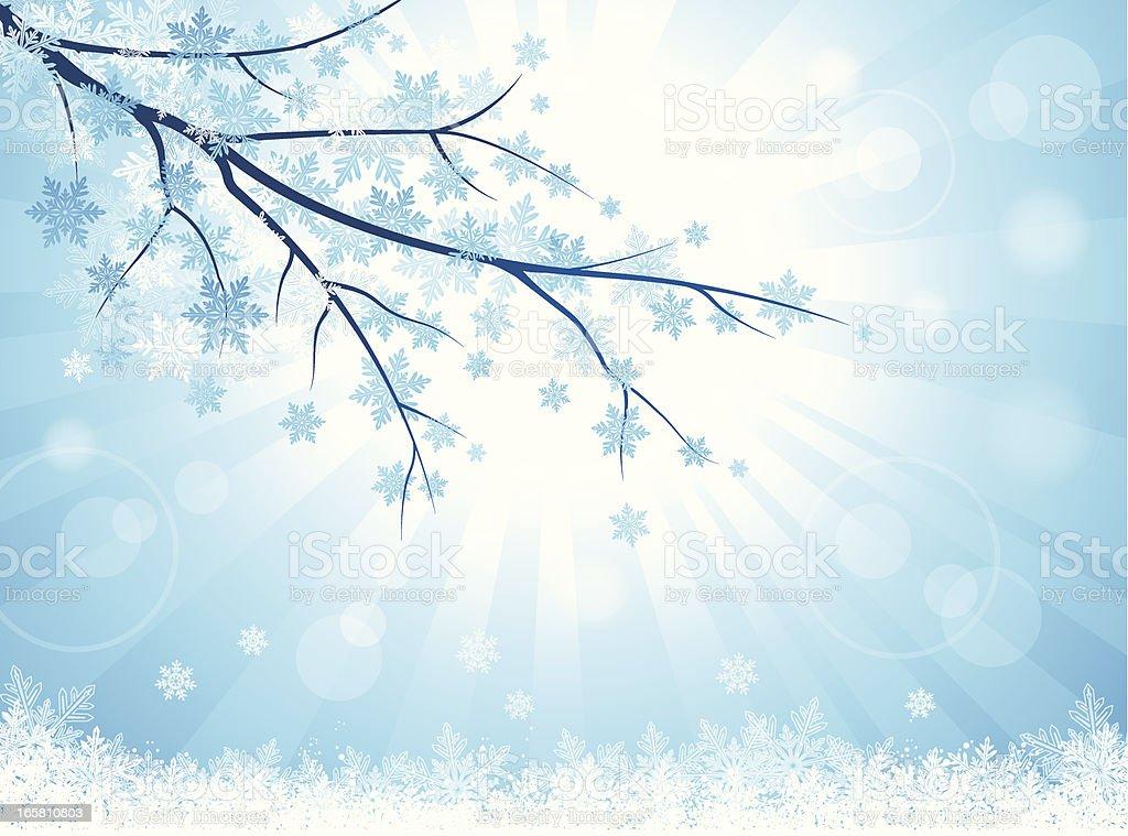 Winter Branch vector art illustration