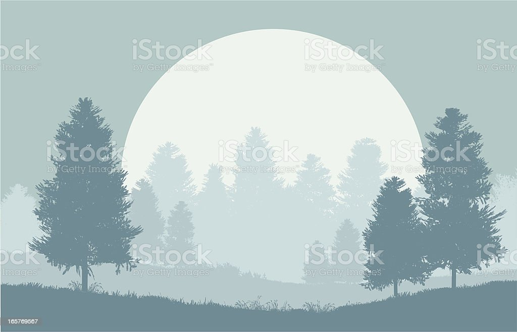 Winter forest at night royalty-free stock vector art