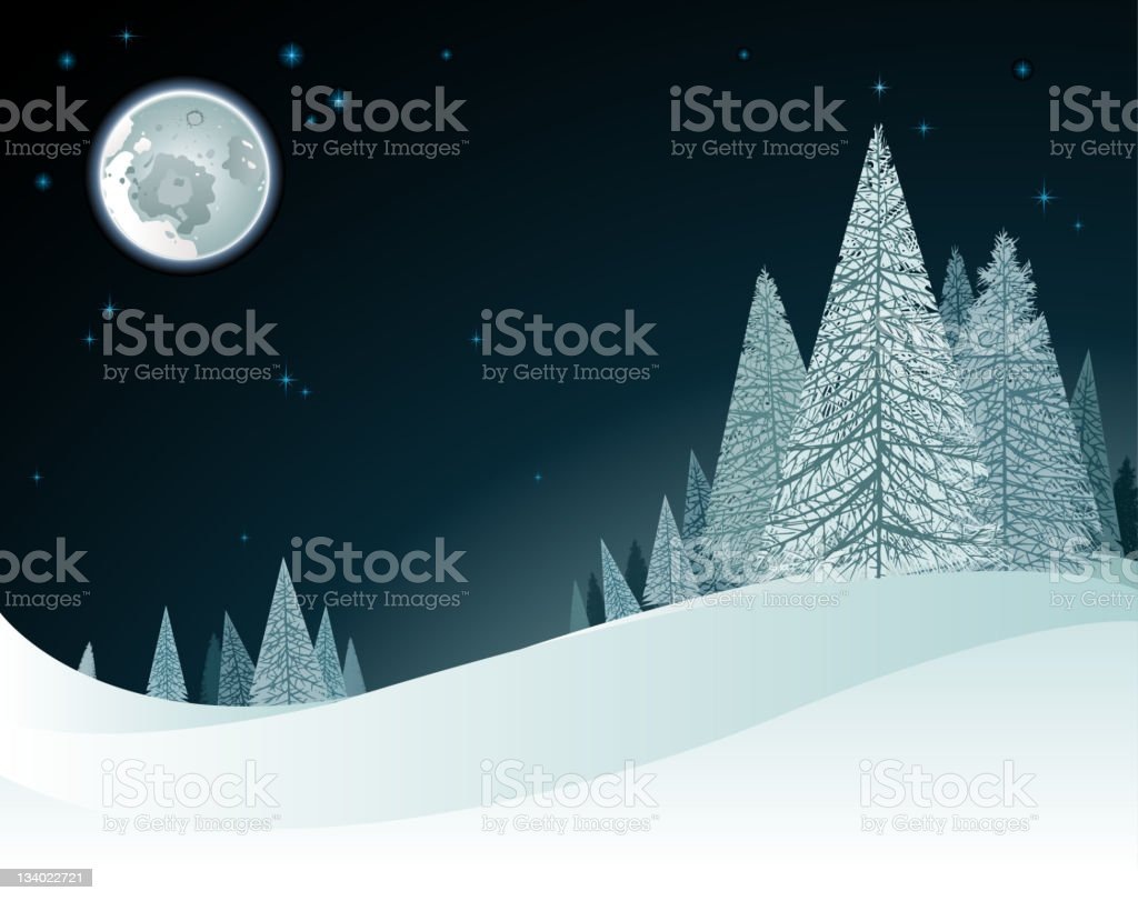 winter in nature stock photo