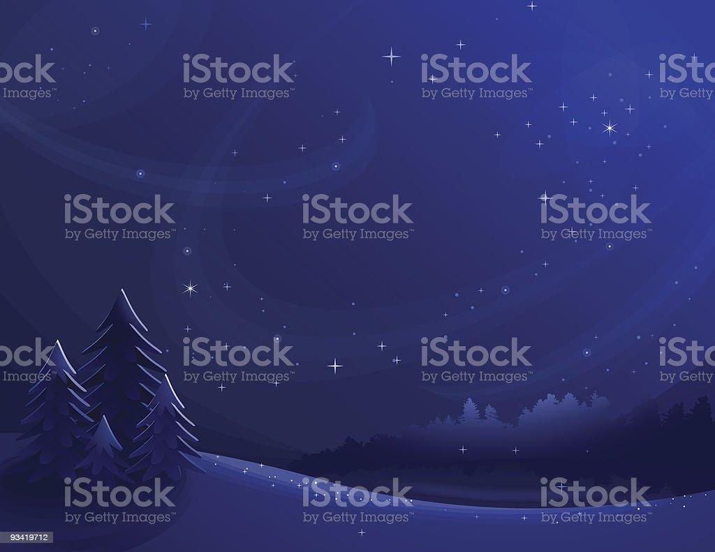 Winter night landscape background vector art illustration