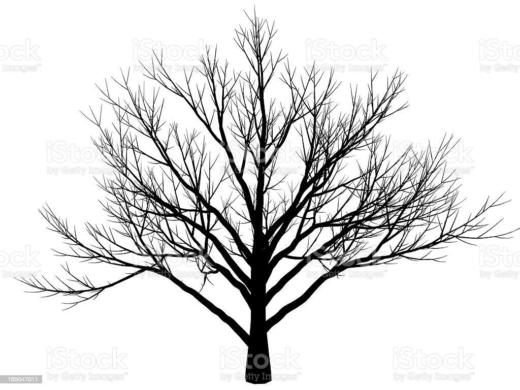 winter tree royalty-free stock vector art