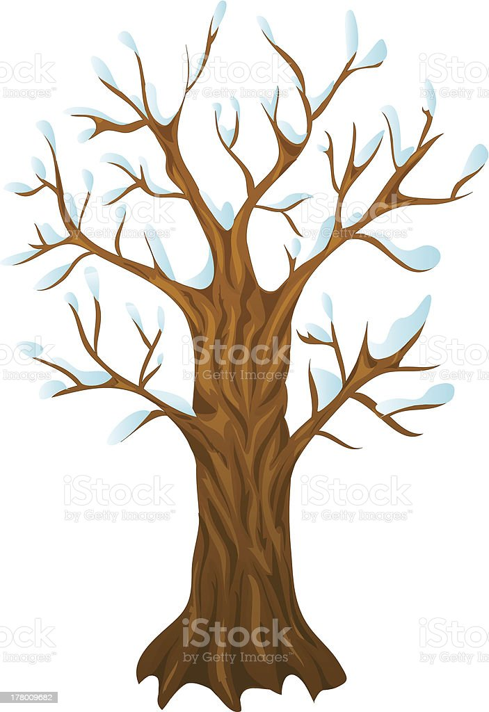 winter tree , with isolation on a white background royalty-free stock vector art