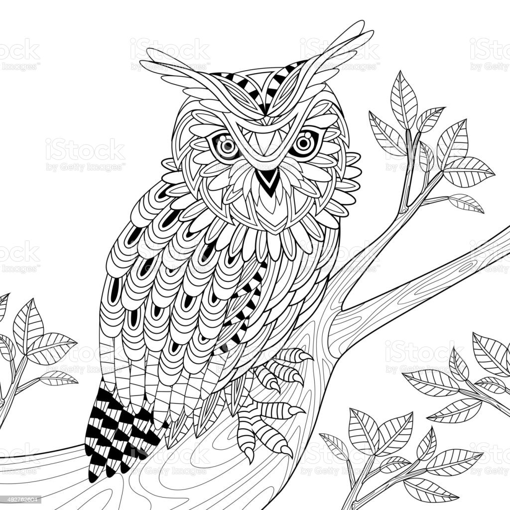 wise owl vector art illustration