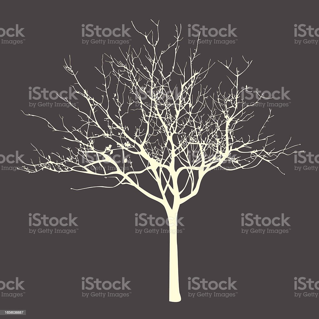withered tree vector art illustration