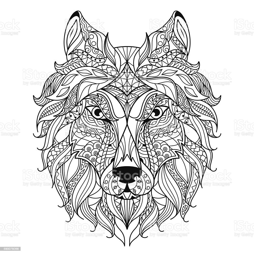 wolf head zentangle stylized coloring page stock vector art
