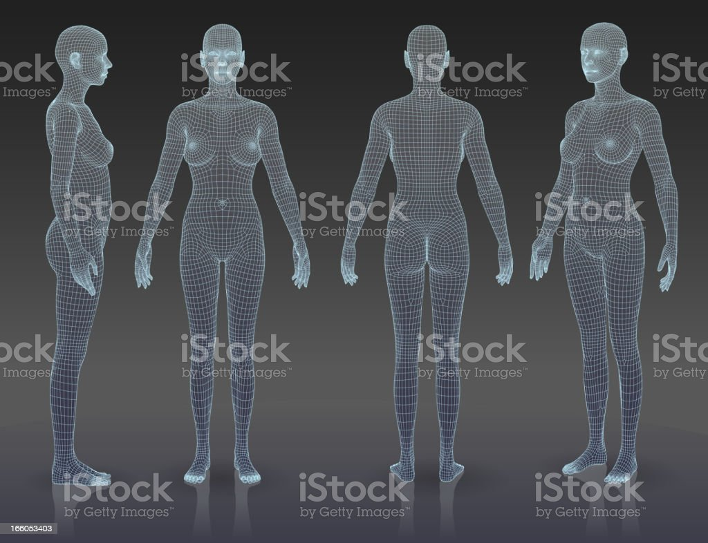 Woman body set vector art illustration
