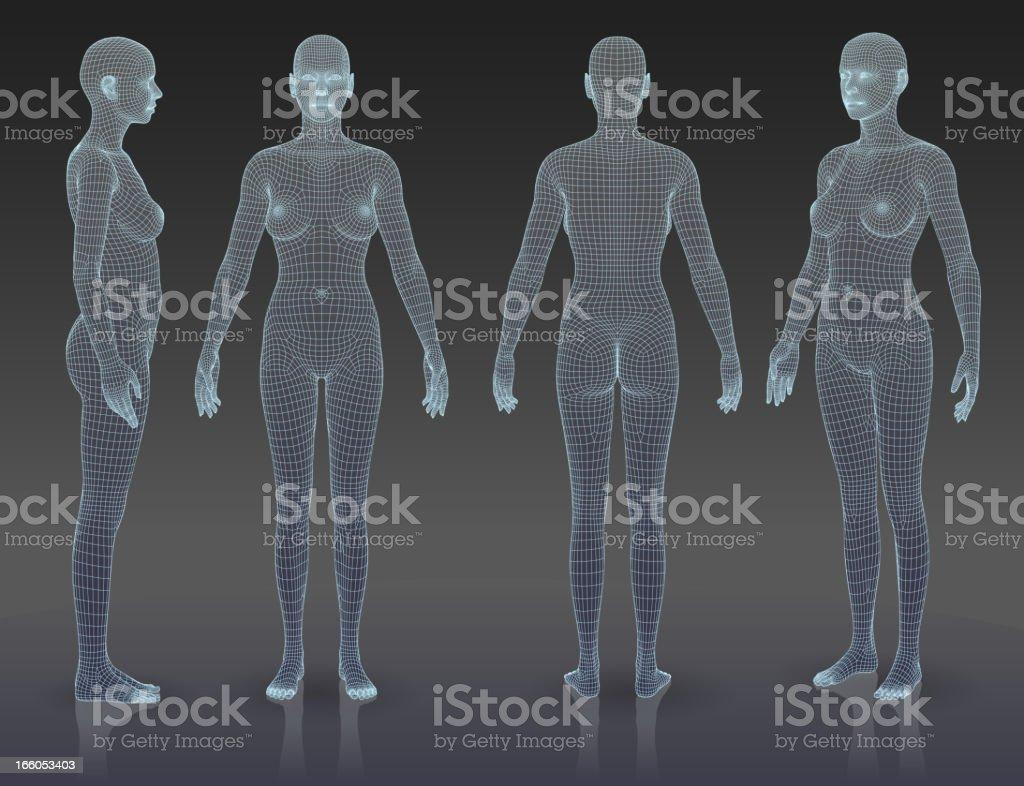 Woman body set vector art illustration
