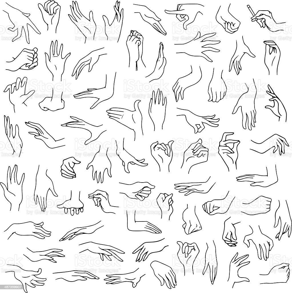 Woman Hands Pack Lineart vector art illustration