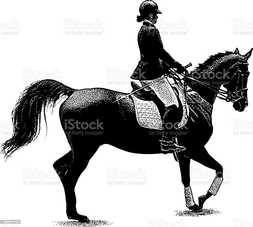 Woman Horseback Riding Equestrian Style vector art illustration