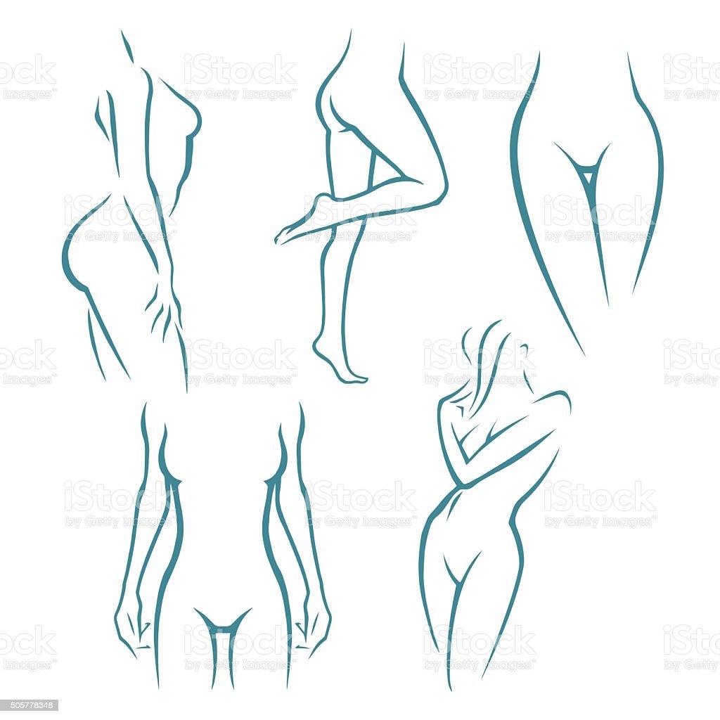 Woman silhouette set vector art illustration