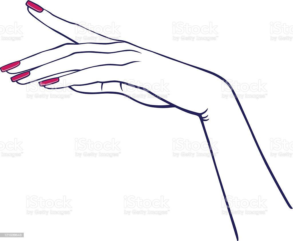 Woman's hands vector art illustration