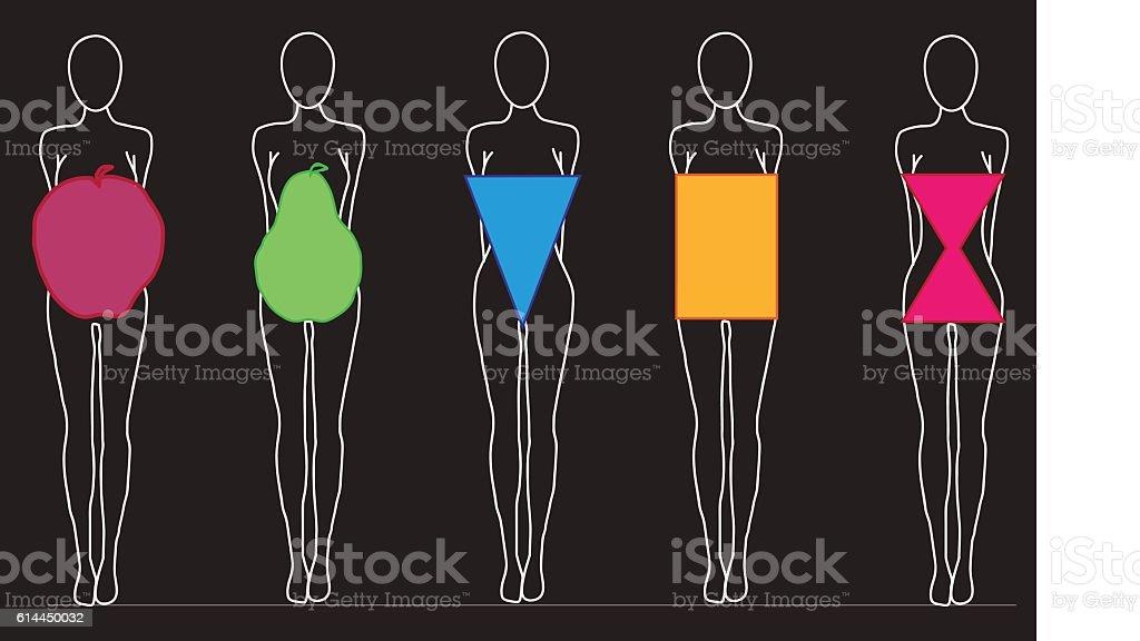 Women Body Shapes vector art illustration