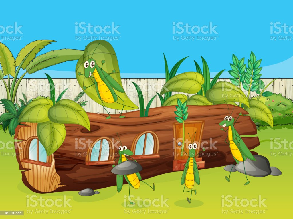 Wood house and grasshopper royalty-free stock vector art