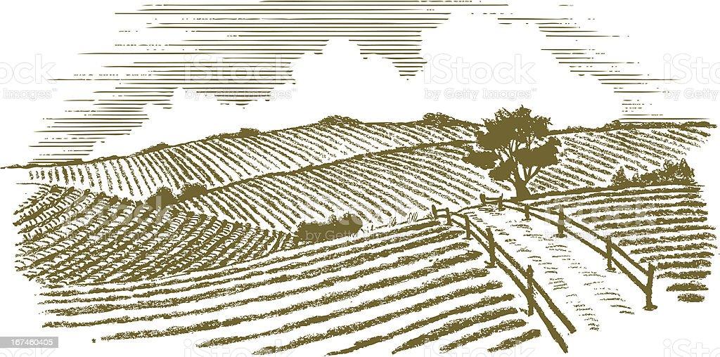 Woodcut Countryside vector art illustration