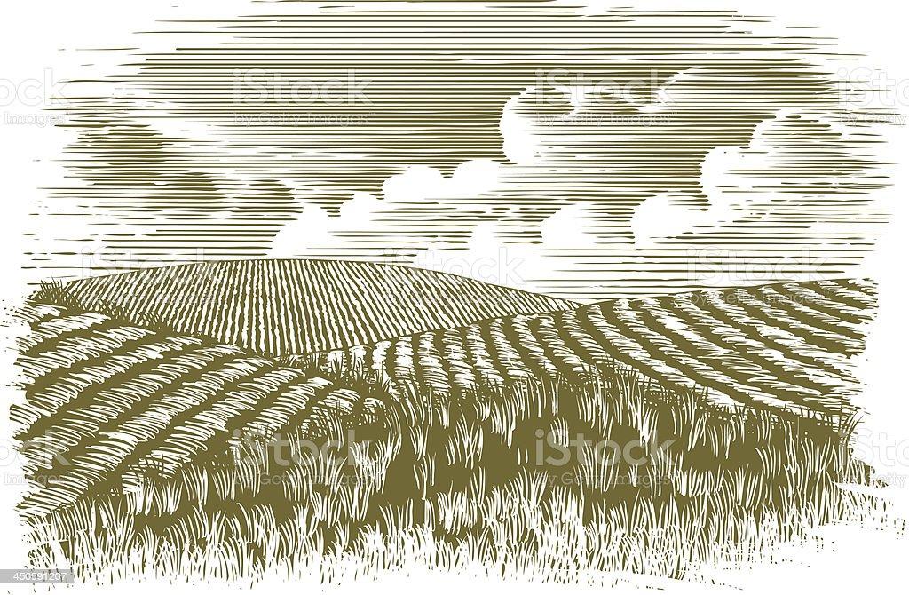 Woodcut Farm Fields vector art illustration