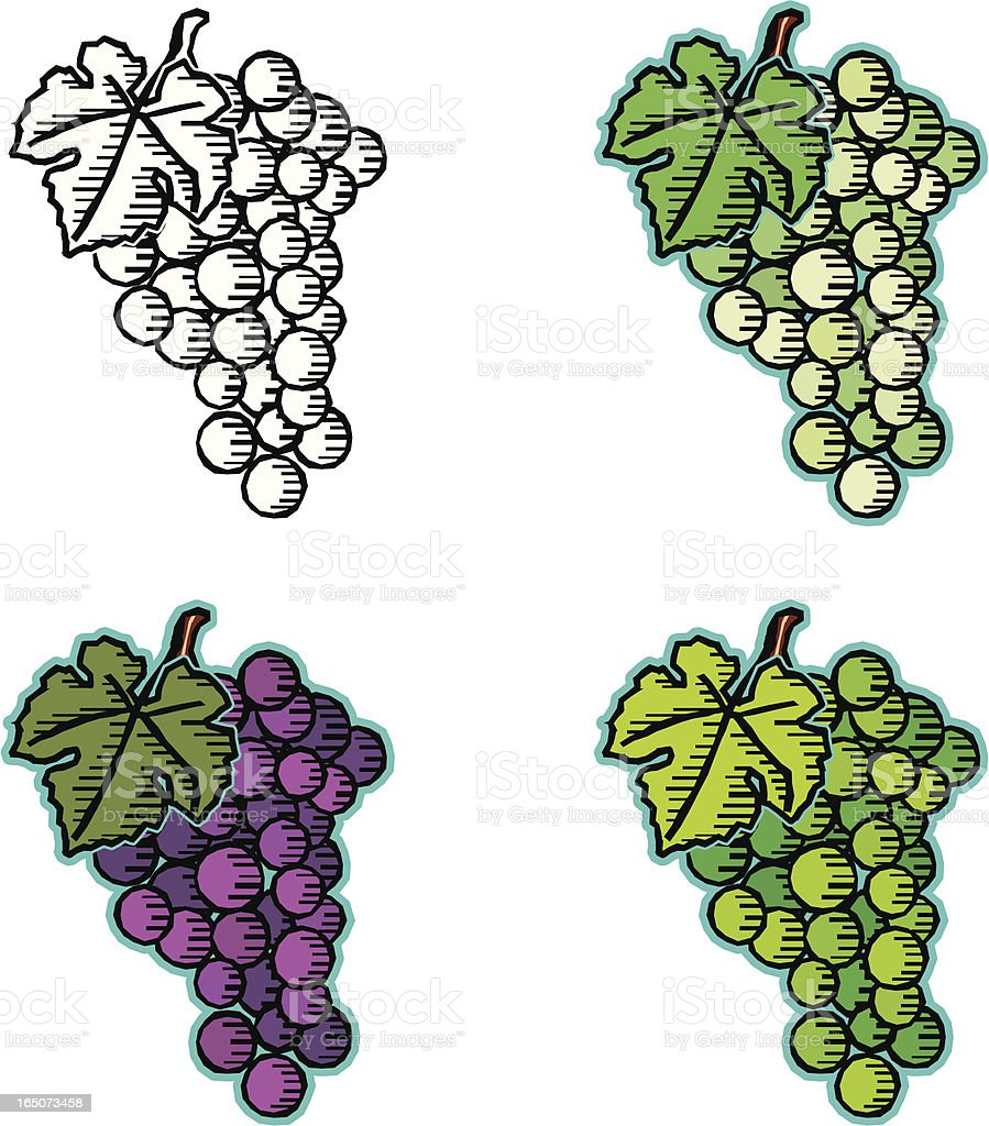 Woodcut grapes vector art illustration