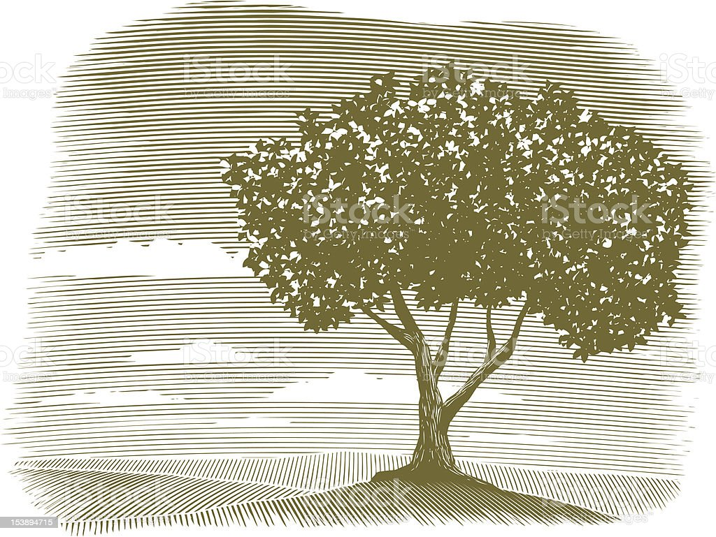 Woodcut Tree Landscape Vignette royalty-free stock vector art