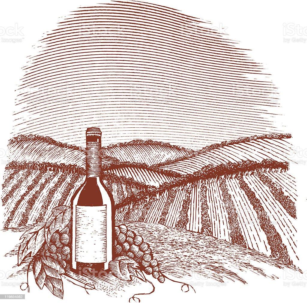 Woodcut Vineyard vector art illustration